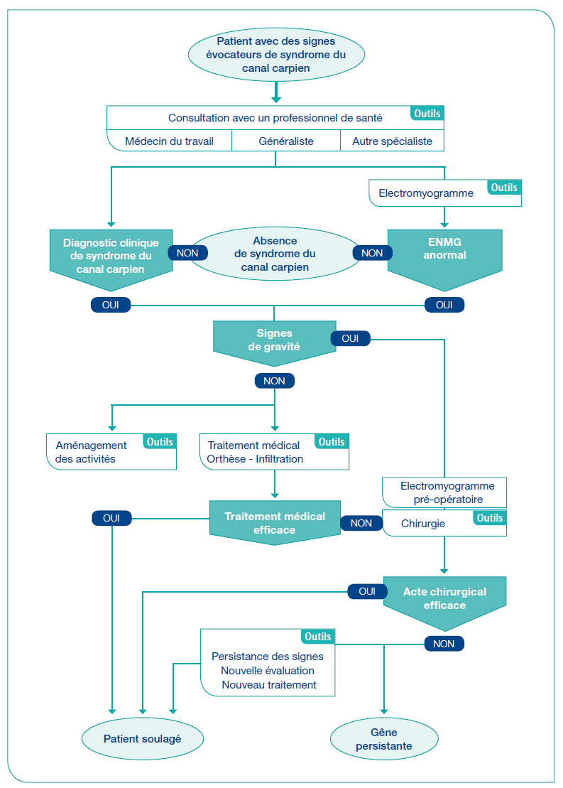 http://www.has-sante.fr/portail/upload/docs/image/png/2013-03/schema_syndrome_canal_carpien_grand_format.png